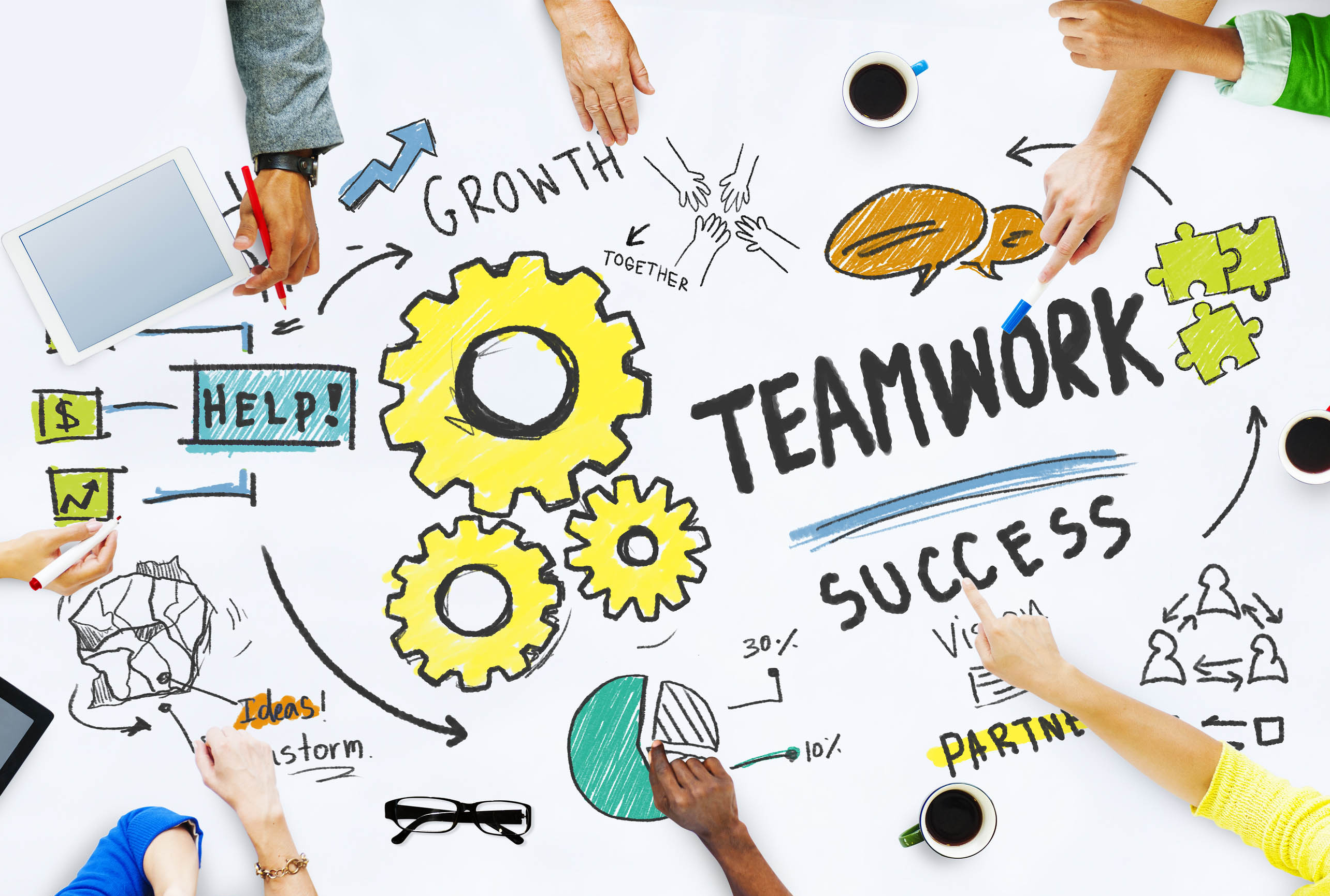 Team Culture – What Drives Success?
